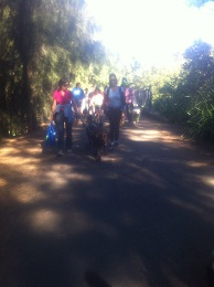 Million Paws 2013 Leading The Way