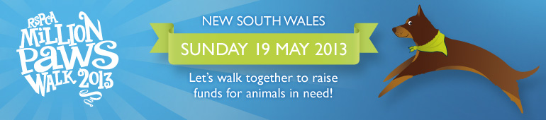 Million Paws Walk 2013 Banner