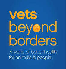 vets beyond